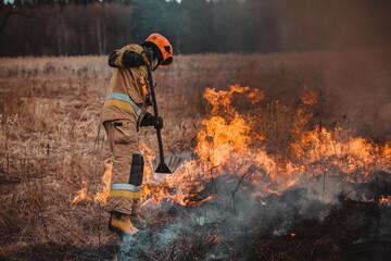 Pożar Lasu - Forest Fire