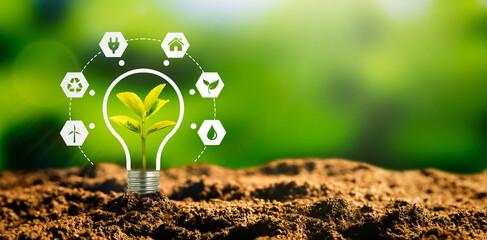 Fototapeta Sustainable energy sources concept obraz