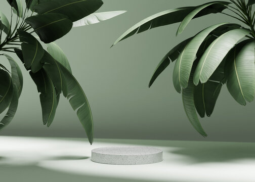 3D background with stone podium display. Nature rock pedestal with tropical palm leaf and shadow on green background. Cosmetic, beauty product promotion stand with plant. Studio 3D render illustration