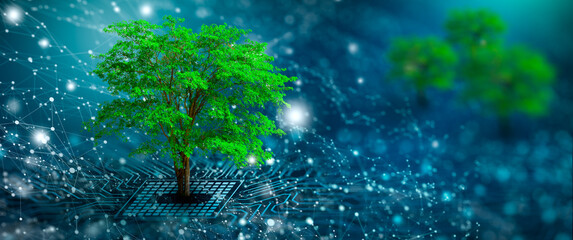 Obraz Tree with soil growing on  the converging point of computer circuit board. Blue light and wireframe network background. Green Computing, Green Technology, Green IT, csr, and IT ethics Concept. - fototapety do salonu