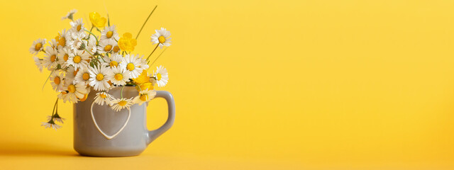 Bouquet of daisy flowers in gray cup on yellow background. Spring still life with little chamomile. Banner. - fototapety na wymiar