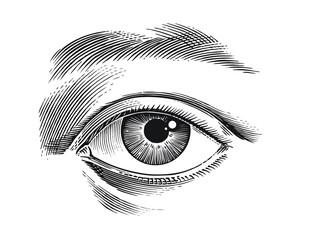 Obraz eye of the person - fototapety do salonu