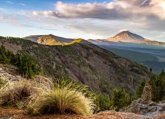 Teide National Park - fototapety na wymiar