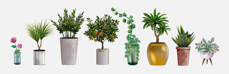 Fototapeta Collection of vector realistic detailed house or office plant for interior design and decoration. Tropical and Mediterranean plant and flowers for interior decor of home or office obraz