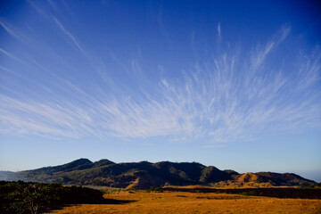 Obraz nubes cirro o cirrus en la pradera - fototapety do salonu