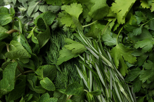 Different fresh herbs on whole background, close up