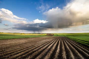 Świeżo zaorane wiejskie pola, krajobraz.