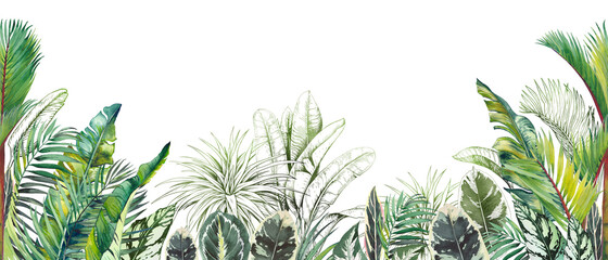 Fototapeta Seamless tropical border with green palm foliage. Watercolor and graphic illustration on white. obraz