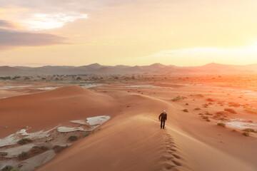 Single man on high dune in the Namib desert - fototapety na wymiar