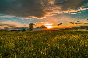 Fototapeta Gmina Grybów, zachód słońca, wiosna, małopolska obraz