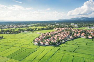 Obraz Land or landscape of green field in aerial view. Include agriculture farm, house building, village. That real estate or property. Plot of land for housing subdivision, development, sale or investment. - fototapety do salonu