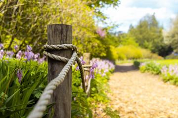 Baśniowa ścieżka z kwiatami - fototapety na wymiar
