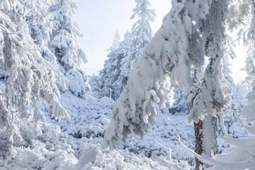 Fototapeta Góry zimą, najpiękniejsze widoki obraz