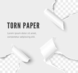 Fototapeta Ripped paper set. Holes corner of white paper sheet. Realistic vector rip paper effect obraz