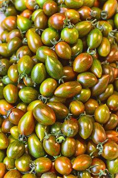 쵸코방울 토마토