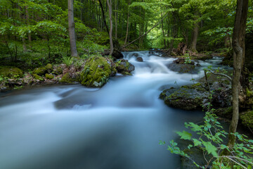 Fototapeta Waterfall cascades. Long exposure image of a wild forest river in Slovakia. obraz
