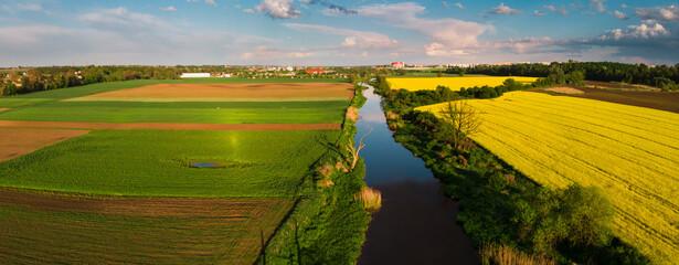 Fototapeta Rzeka Prosna wypływająca z Miasta Kalisz miedzy żółtymi polami rzepaku obraz