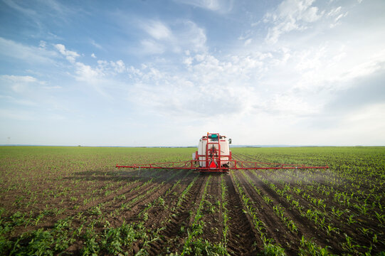 Tractor spraying pesticides at corn fields