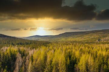 Fototapeta Karkonosze wiosną. Zalesione zbocza góry widziane z drona. obraz