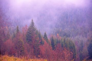 Berglandschap in de vroege mistige herfstochtend