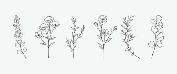 Obraz Minimal botanical hand drawing design for logo and wedding invitation. Floral line art.  Flower and leaves design collection for bouquets decoration, card and packaging background. - fototapety do salonu
