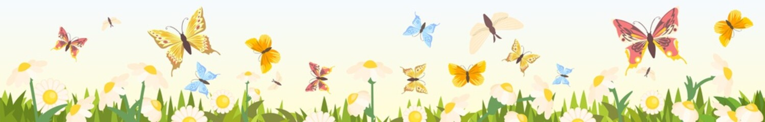 Meadow with wildflowers and butterflies. Seamless illustration. Grass close-up. Green landscape. Summer sky. Cartoon style. Flat design. Flowers. Vector art