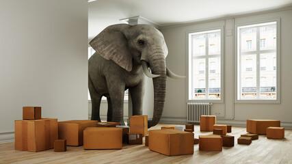 Obraz Starker Elefant mit Umzugskartons beim Umzug im Raum - fototapety do salonu