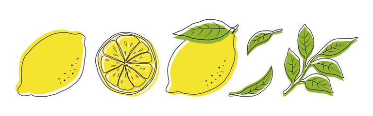 Fototapeta vector illustrations of lemons and leaves for banners, cards, flyers, social media wallpapers, etc. obraz
