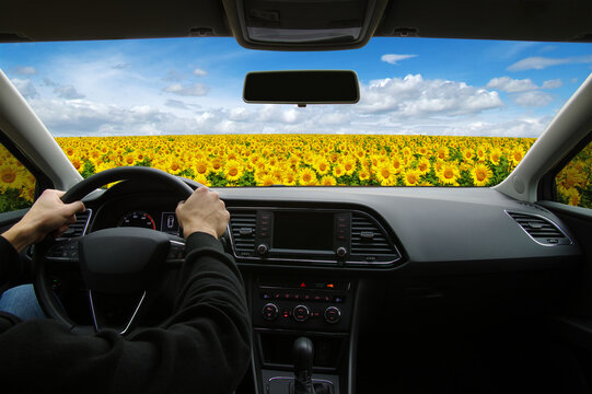 man inside the car