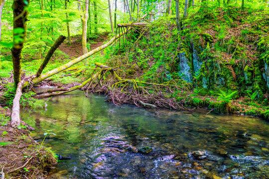 Holzhindernisse im Brexbach im Westerwald