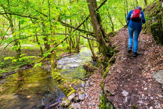 Wanderpfad in der Brexbachschlucht