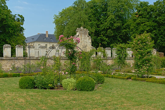 Rose garden of the Abbey of Chaalis, Oise, France