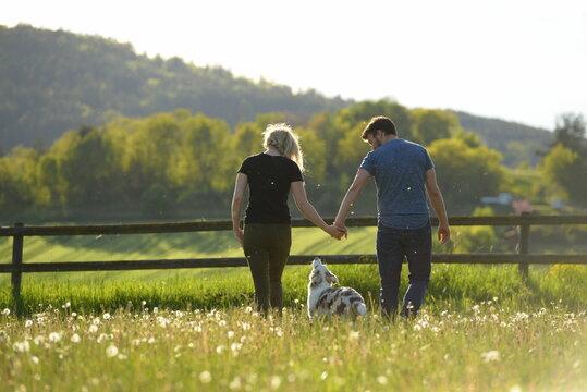 Tierliebe. Junge Menschen mit hübschen Junghund in der Abendsonne