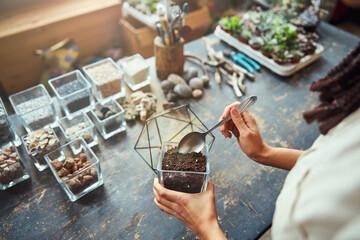 Obraz Florist adding the potting mix to a polyhedron terrarium container - fototapety do salonu