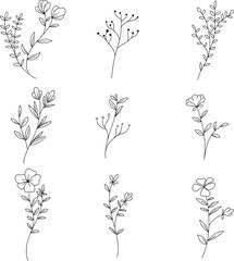 set botanical leaf doodle wildflower line art