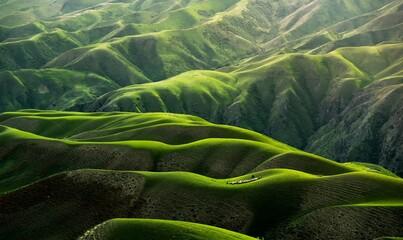 rice terraces in island