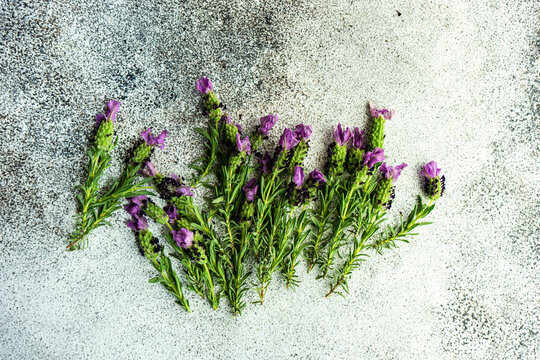 Overhead view of fresh lavender on a  table