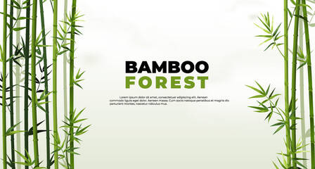Bamboo forest banner. East Asian tropical plants background. Tree border elements and leaves. Straight trunks and foliage. Vector Japanese or Chinese poster with lettering and copy space