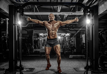Bodybuilder athlete trains in the gym. Sporty muscular guy with training apparatus. Sport and fitness motivation. Individual sports recreation with bodybuilding.