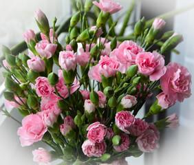 Obraz bouquet of pink roses - fototapety do salonu