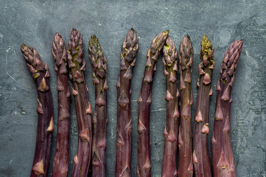 Purple asparagus on a gray surface
