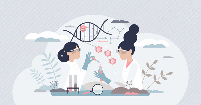 Epigenetics research and study of DNA gene expression tiny person concept. Work scene with phenotype changes experiment in microbiology lab vector illustration. Genetic sequence science and knowledge.