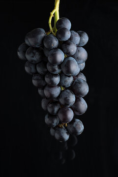 Bunch of black grapes side light on a black background above a black reflective surface.