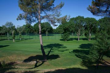 pole golfowe widok trawa natura zieleń wiosna - fototapety na wymiar