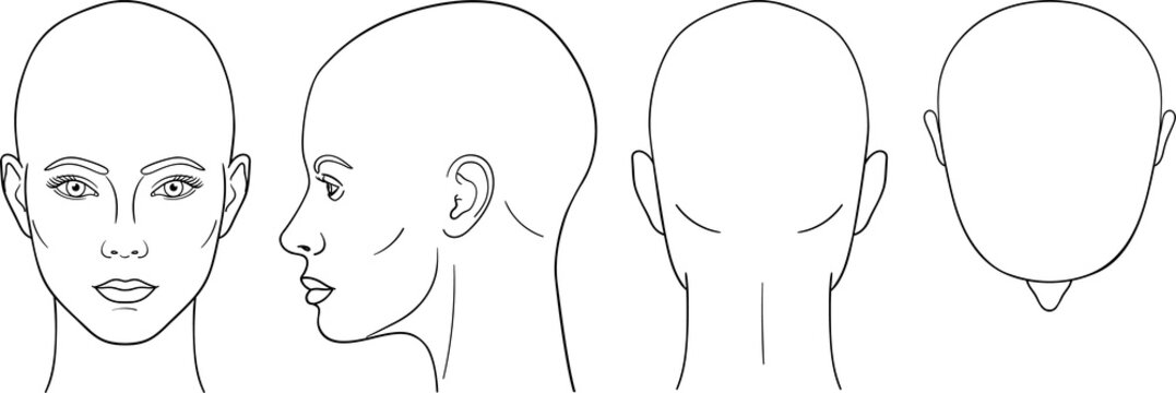 Female head vector illustration in front, back, top, side view