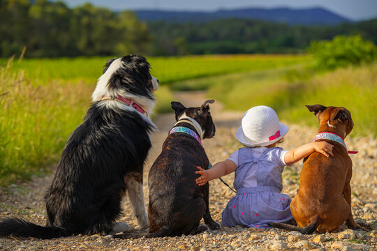 little girl with three dogs