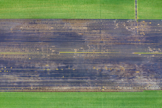 Aerial view of an agricultural field in Vero Beach countryside, Florida, United States.