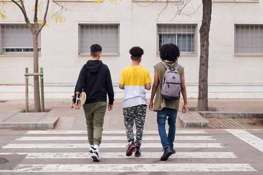 Multiethnic friends walking on pedestrian crossing