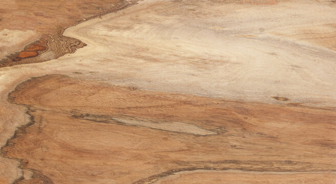 Brown, beige and gray walnut wooden background. Walnut board surface