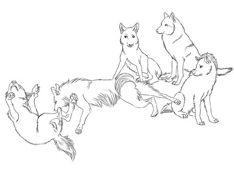 Digital illustration of a group of wolves looking at two other wolves that are fighting